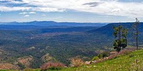 Achieving Forest Health in Arizona:  What is Sustainable and Executable? tickets