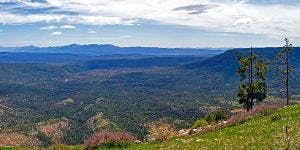 Achieving Forest Health in Arizona:  What is Sustainable and Executable?