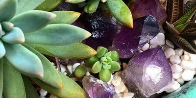 Crystals and Succulents!