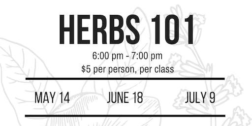 Herbs 101 with Sarah!