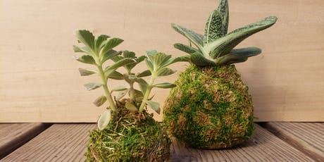 Kokedama Class - Sun, July 21st tickets