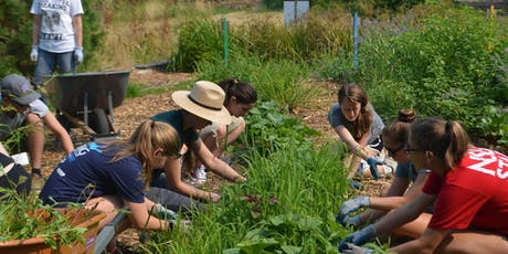 Volunteer: KCD & CitySoil Farm Work and Learn Party tickets