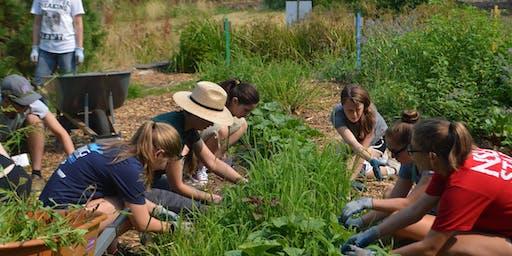 Volunteer: KCD & CitySoil Farm Work and Learn Party