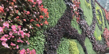 Roof Top Gardens and Green Walls. One Day Workshop on 20th August 2019 tickets