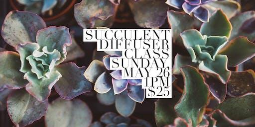 Succulent Diffuser DIY