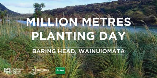Million Metres Planting Day – Baring Head