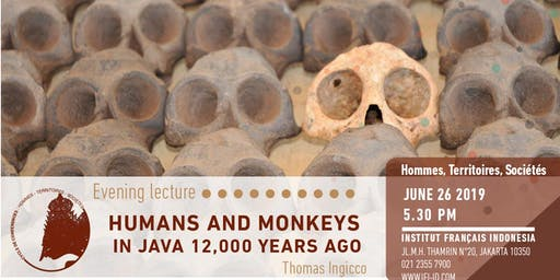 Humans and monkeys in Java 12,000 years ago