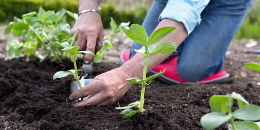 Horticulture and Environment - Chisholm Winter School Holiday Workshops 2019