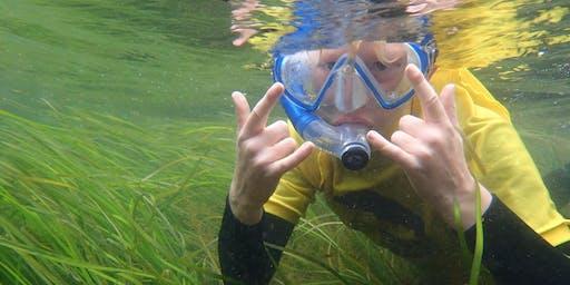 Summer Starts: Summer Snorkel