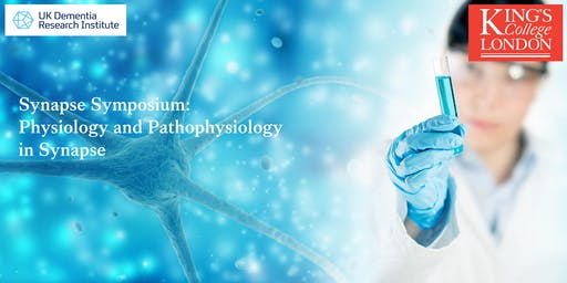 Physiology and Pathophysiology in Synapse
