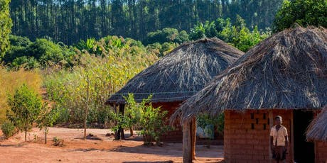 NGP 2019 ENCOUNTER - Africa's social prosperity and landscape's resilience tickets