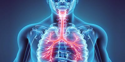 SW Mutidisciplinary Dysphagia CEN - Respiratory considerations in Dysphagia