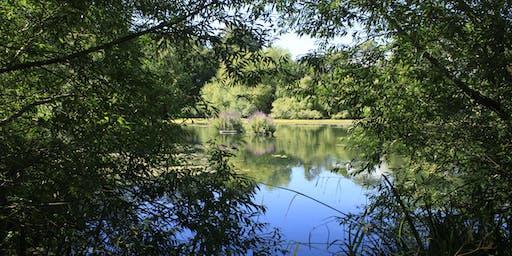 Hampstead Heath Staff Walk: The Historical Landscape