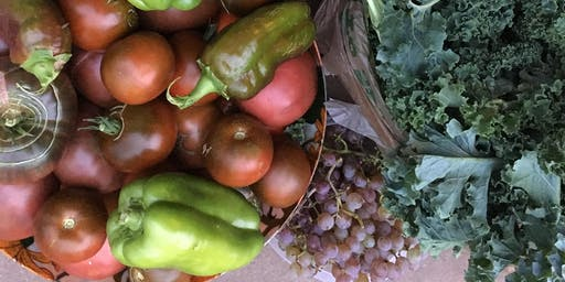 Hands-On Gardens: Part 2 Learn How To Grow Your Own Food 6 week course Mondays