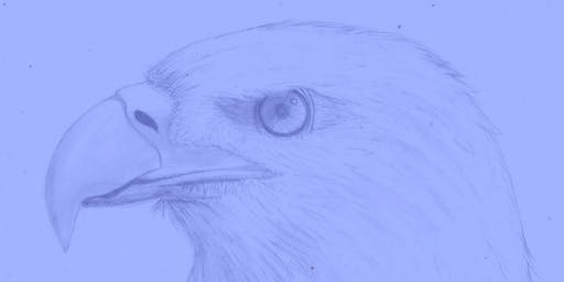 Youth Class: Pencil Drawing - The Eagle