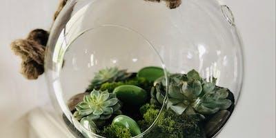 Make your own Zen Rock and Succulent Terrariums