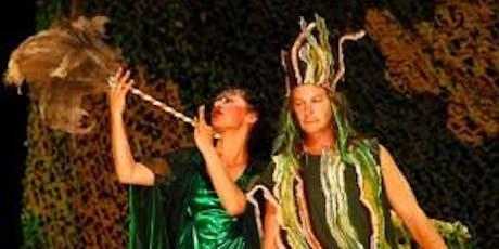 Midsummer Night's Dream ELKI Fundraiser Tickets