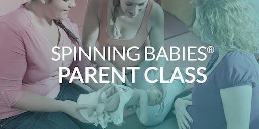 Spinning Babies Parent Education Class - Fairfax