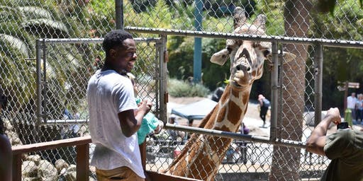 Feed a Giraffe at Oakland Zoo and Save Giraffes in the Wild on July 27, 2019