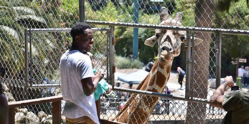 Feed a Giraffe at Oakland Zoo and Save Giraffes in the Wild August 18, 2019