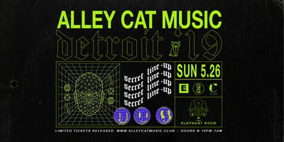 Alley Cat in Detroit