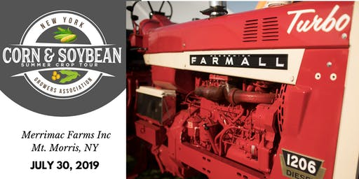 2019 Corn & Soybean Summer Crop Tour