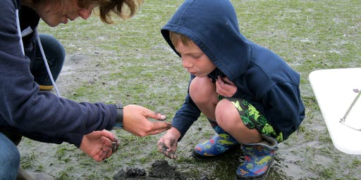 Mini Explorers: Mud Flat Safari (ages 3-5)