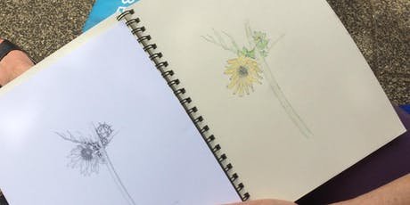Introductory Botanical Drawing: Color Technique tickets