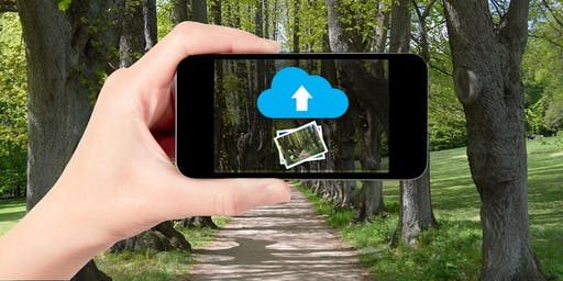 Syncing Your Photos to the Cloud