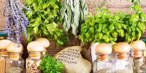 Preserving and Using Herbs: Freezing, Dehydrating and More