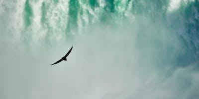 Niagara Environmental Directory Workshop