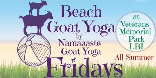 Beach Goat Yoga LBI Fridays 9am: Namaaaste Goat Yoga