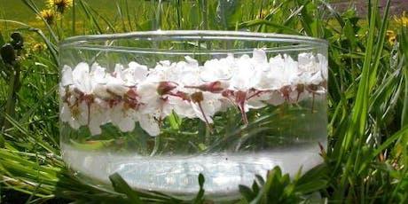 Fabrication d'élixirs floraux (cours 162) billets