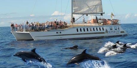 Dolphin Boat Trip Gran Canaria entradas