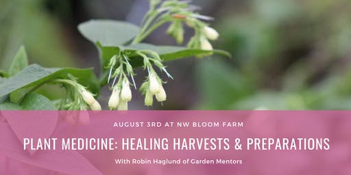 Plant Medicine: Healing Harvests and Preparations