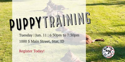 Six Weeks To Success - June Puppy Obedience Class