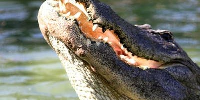 Gatorland Orlando General Admission: Fast Track