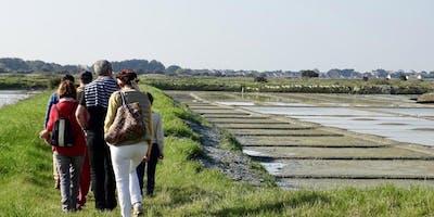 ESCAPADE - Guérande et les marais salants / Trip to Guérande and salt marshes