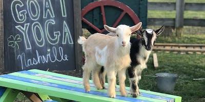 Goat Yoga Nashville-Marvelous May