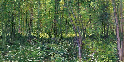 Experiment With Van Gogh's Variations Of Green