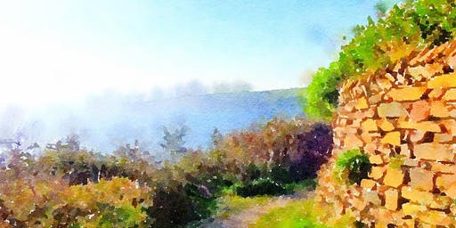Exploring Watercolor Painting for All Levels