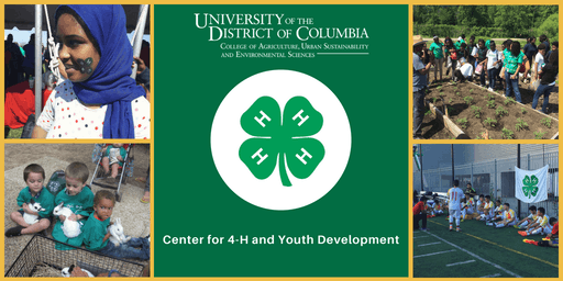 Advancing Youth Development (AYD) 15-Hour Intensive Training Course