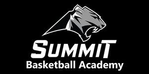 Summit Tigers Basketball Academy
