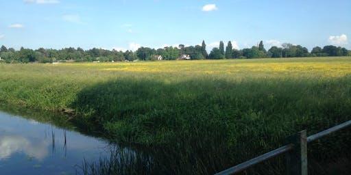 Portholme Meadow: Wildlife & Nature Walk
