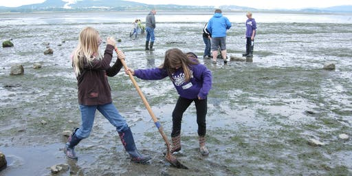 All Ages: Mudflat Safari