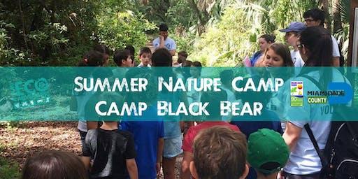 Summer Nature Camp - Camp Black Bear at AD Barnes Park