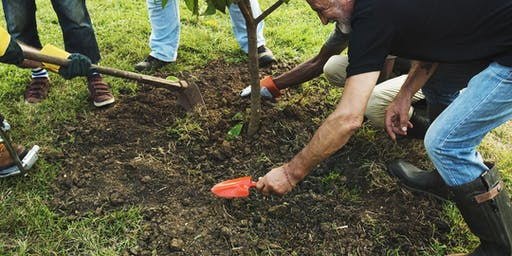 Prosperity Month: Cultivate Volunteering