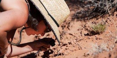 Biological Soil Crusts of Joshua Tree National Park Fall 2019 (Biology x412.28 1 unit)