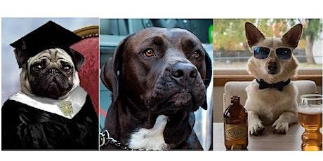 Bo's Dog & Pet Festival at the Coral Gables Art & Mega Festival tickets
