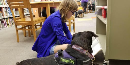Furry Friends Recovery Benefit